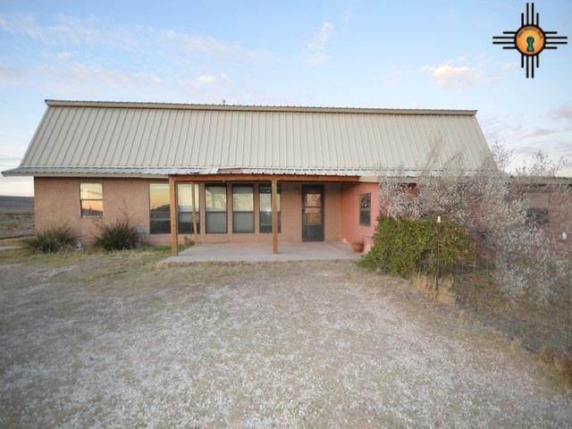 84 Means Rd, Carlsbad, NM 88220 (MLS #20200937) :: Rafter Cross Realty