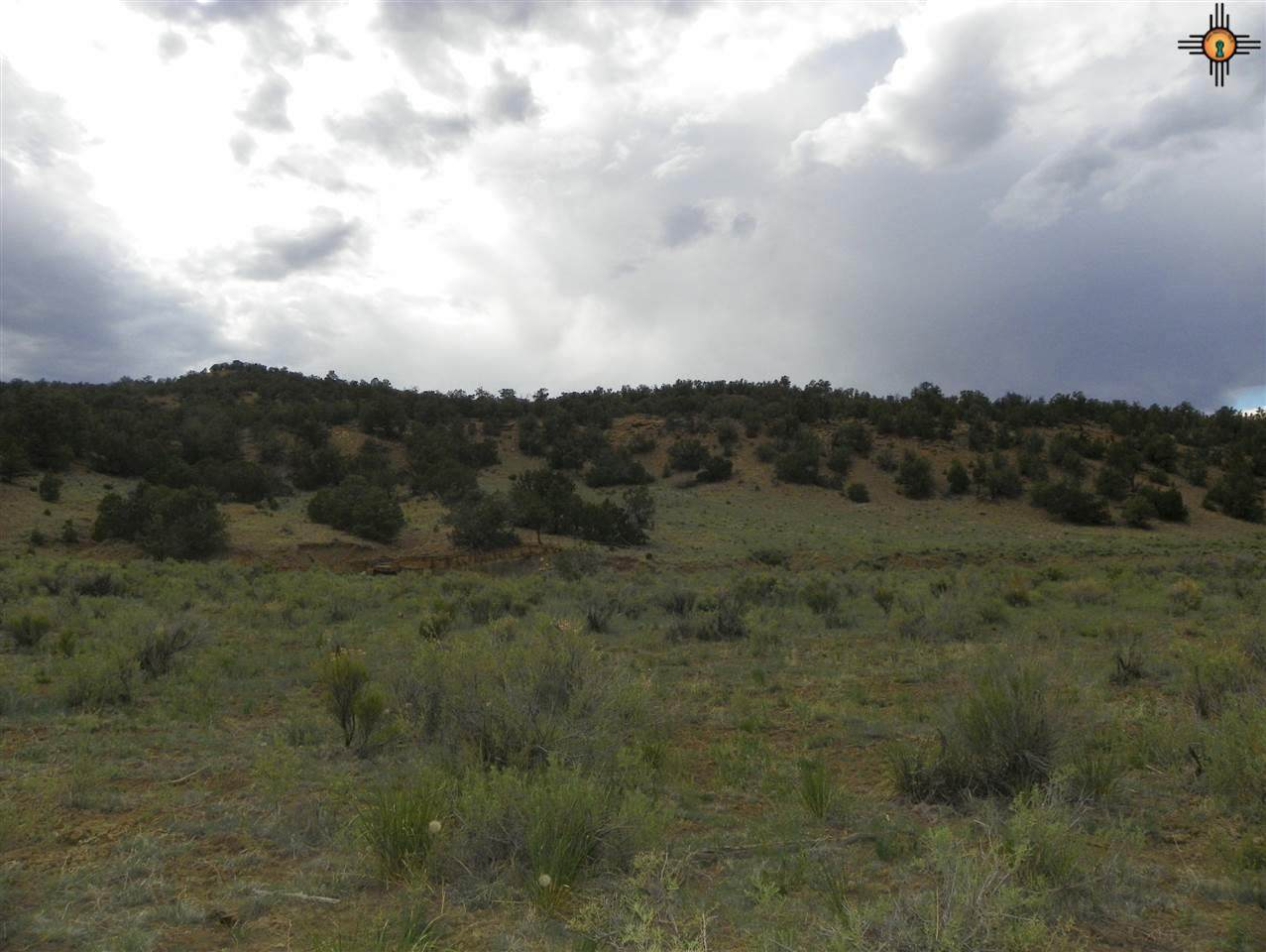 00 North-North East Of Pie Town - Photo 1
