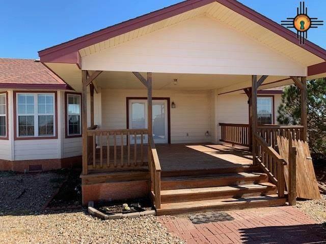 264 Wildflower Ranch, Portales, NM 88130 (MLS #20205010) :: Rafter Cross Realty