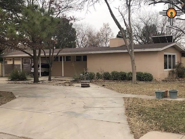 1009 W Ave I, Lovington, NM 88260 (MLS #20210014) :: Rafter Cross Realty