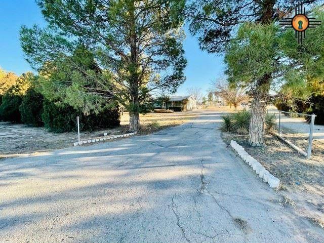 121 W Wagonwheel Road, Carlsbad, NM 88220 (MLS #20210106) :: Rafter Cross Realty