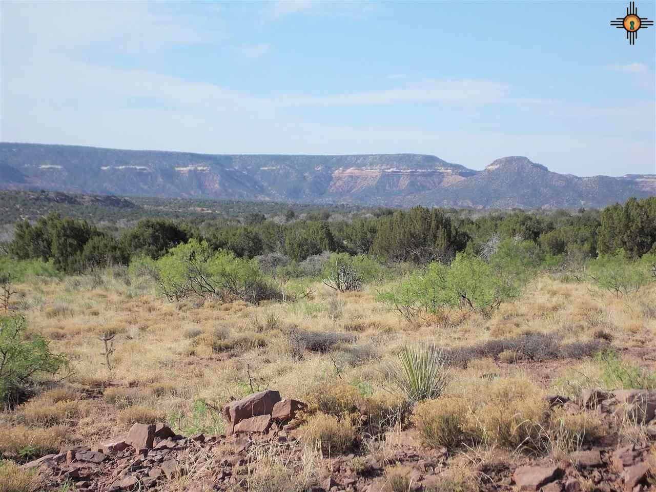 Tract 59 Bull Canyon Ranch - Photo 1