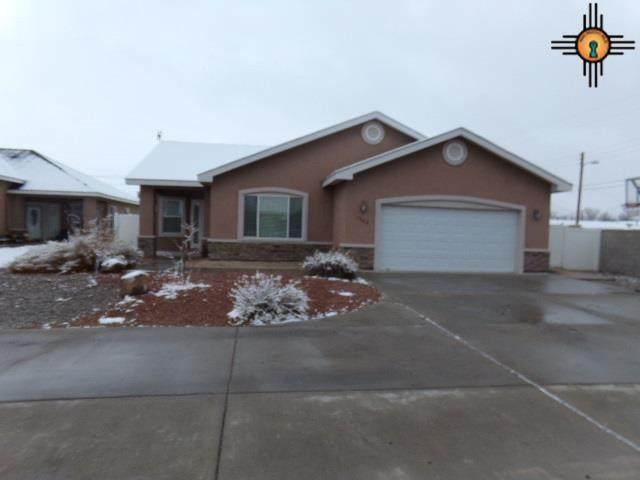 1502 Lolita Court, Artesia, NM 88210 (MLS #20210275) :: Rafter Cross Realty