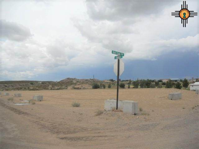 Kopra & Golf Club Rd., Truth Or Consequences, NM 87901 (MLS #20210613) :: The Bridges Team with Keller Williams Realty