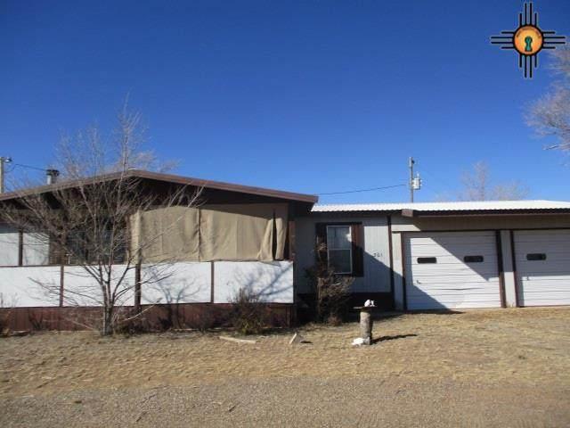 301 540 Loop, Logan, NM 88426 (MLS #20211281) :: Rafter Cross Realty
