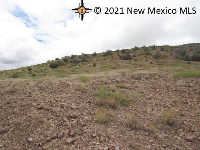 4 Nana Trail Rd, Hillsboro, NM 88042 (MLS #20213697) :: The Bridges Team with Keller Williams Realty