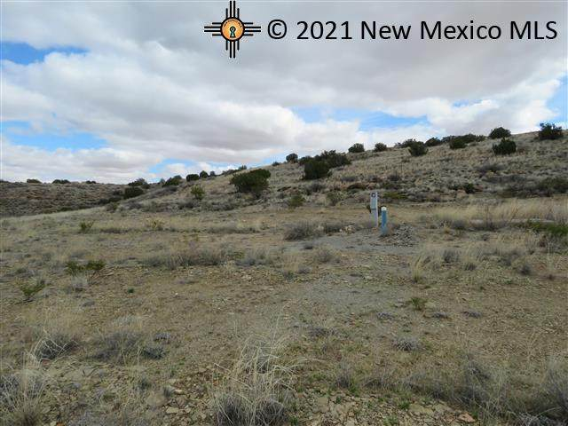 Lot 1 Champagne Hills Rd Rdl, Elephant Butte, NM 87935 (MLS #20213720) :: The Bridges Team with Keller Williams Realty