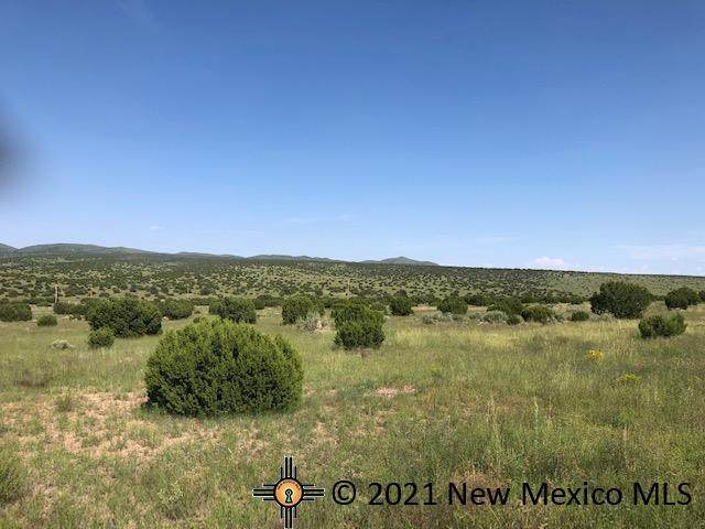 Lot 187 Campfire Road, Magdalena, NM 87825 (MLS #20214597) :: The Bridges Team with Keller Williams Realty