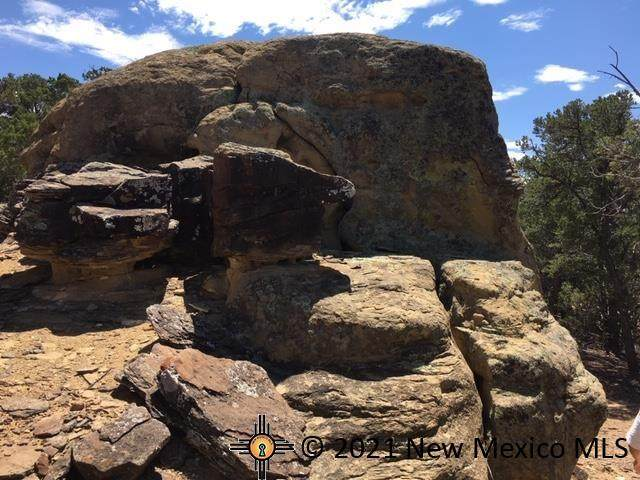 Tract 23 Choctaw Court, PIE TOWN, NM 87827 (MLS #20214832) :: The Bridges Team with Keller Williams Realty