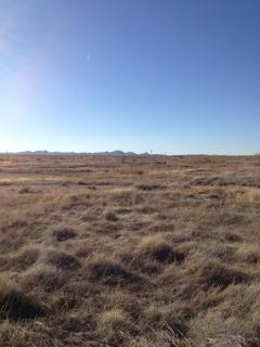 Lot 10 Pyramid Shadows, Lordsburg, NM 88045 (MLS #20135086) :: Rafter Cross Realty