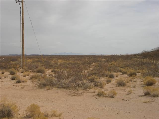 29551 Interstate 10, Las Cruces, NM 88001 (MLS #20135325) :: Rafter Cross Realty