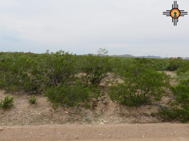 000 Retreat Rd Sw, Deming, NM 88030 (MLS #20155604) :: Rafter Cross Realty