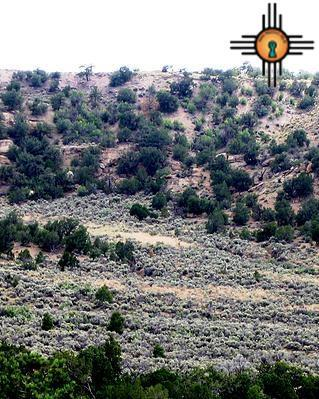 1 OF 60+ LOTS IN CATALPA HILLS SUB, Gallup, NM 87301 (MLS #20155644) :: Rafter Cross Realty
