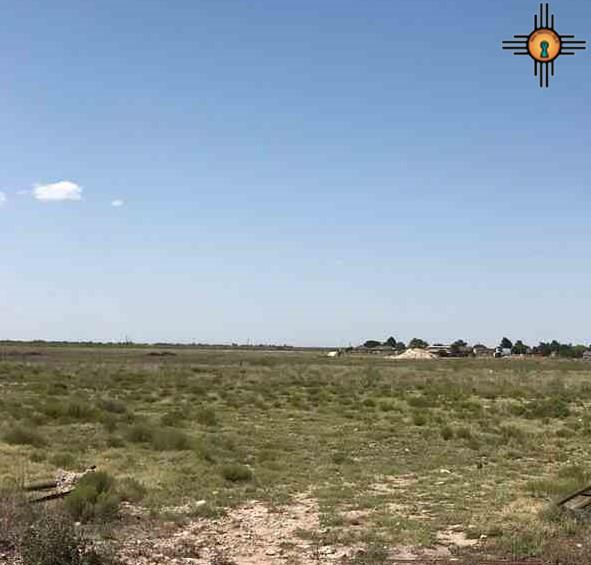 20 Acres N Butler, Hobbs, NM 88240 (MLS #20181511) :: Rafter Cross Realty