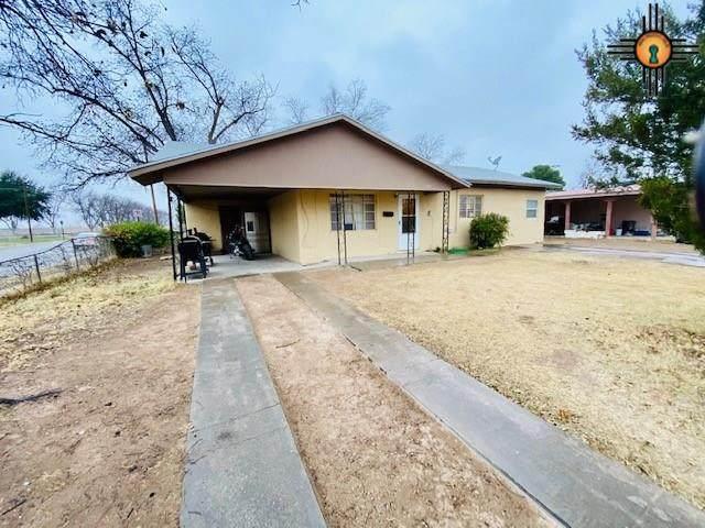 515 Dallas Drive, Carlsbad, NM 88220 (MLS #20205362) :: Rafter Cross Realty