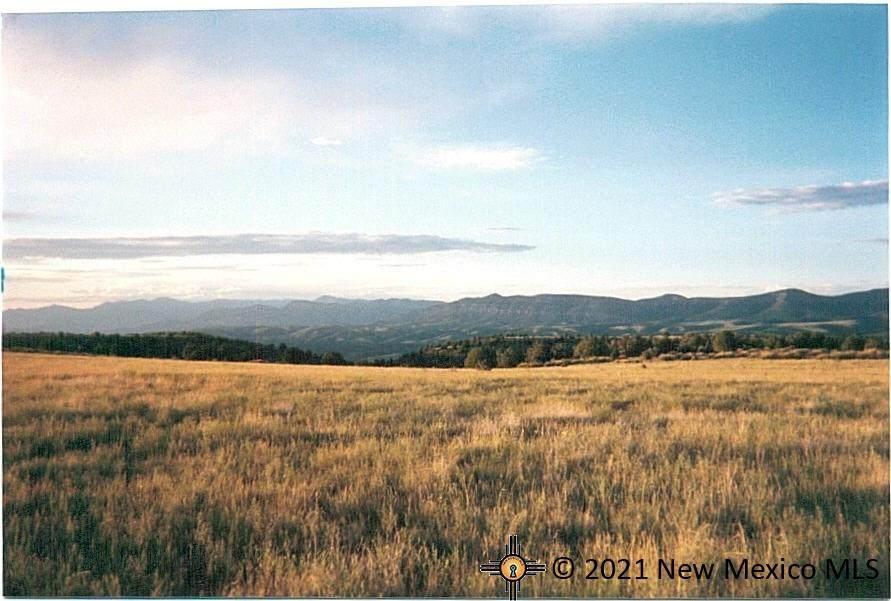 1221 Bear Mountain Road - Photo 1