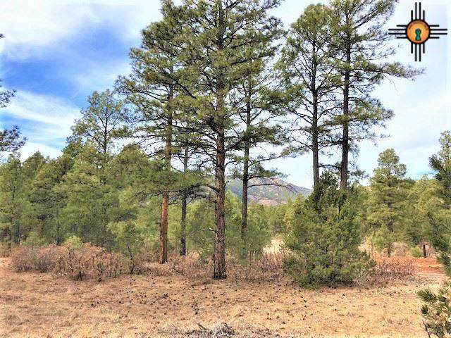 Tract 6A Roxie Road, Mineral Hill, NM 87701 (MLS #20205817) :: The Bridges Team with Keller Williams Realty