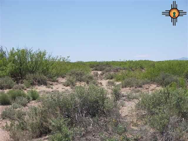 Svr Unit 16 Bk 8 T 18-25, Deming, NM 88030 (MLS #20112246) :: The Bridges Team with Keller Williams Realty