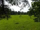 20698 Thibodeaux Road - Photo 7