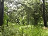 20698 Thibodeaux Road - Photo 8