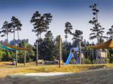 Bald Eagle Circle - Photo 7