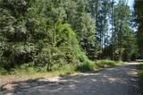 25052 D Pittman Road - Photo 14