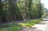 25052 D Pittman Road - Photo 5