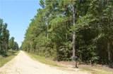25052 D Pittman Road - Photo 6