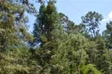 25052 D Pittman Road - Photo 7