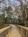 40216 Cypress Reserve Boulevard - Photo 9
