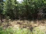 Meadow Lark Drive - Photo 1