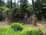 Meadow Lark Drive - Photo 2