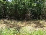 Meadow Lark Drive - Photo 5