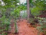 8009 Bedico Trail Lane - Photo 25