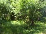 Pine Drive - Photo 6