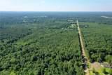 +/- 40 Acres 1065 Highway - Photo 13
