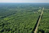 +/- 40 Acres 1065 Highway - Photo 14