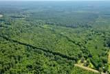 +/- 40 Acres 1065 Highway - Photo 16