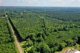 +/- 40 Acres 1065 Highway - Photo 2