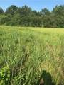 +/- 2 ACRES Choctaw Hills Dr Drive - Photo 3