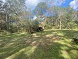 42433 Fire Tower Road - Photo 13