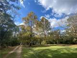 42433 Fire Tower Road - Photo 4