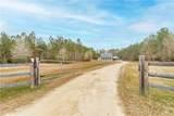 31728 Pea Ridge Road - Photo 1