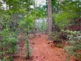 8072 Bedico Trail Lane - Photo 11