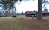 43314 Willie Youngblood Road - Photo 3