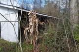 57203 Highway 439 - Photo 3
