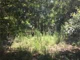 211 Pine Hazel Drive - Photo 1