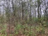 17.916 Acres 430 Highway - Photo 12