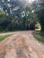 +/-21 Acres Burch Road - Photo 1