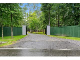 35155 Bayou Liberty Road, Slidell, LA 70460 (MLS #2077987) :: Turner Real Estate Group